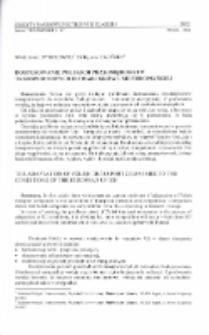 Dostosowanie polskich przedsiębiorstw transportowych do warunków Unii Europejskiej