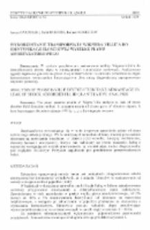 Wykorzystanie transformaty Wignera-Ville'a do identyfikacji ilościowej wycieku płynu amortyzatorowego